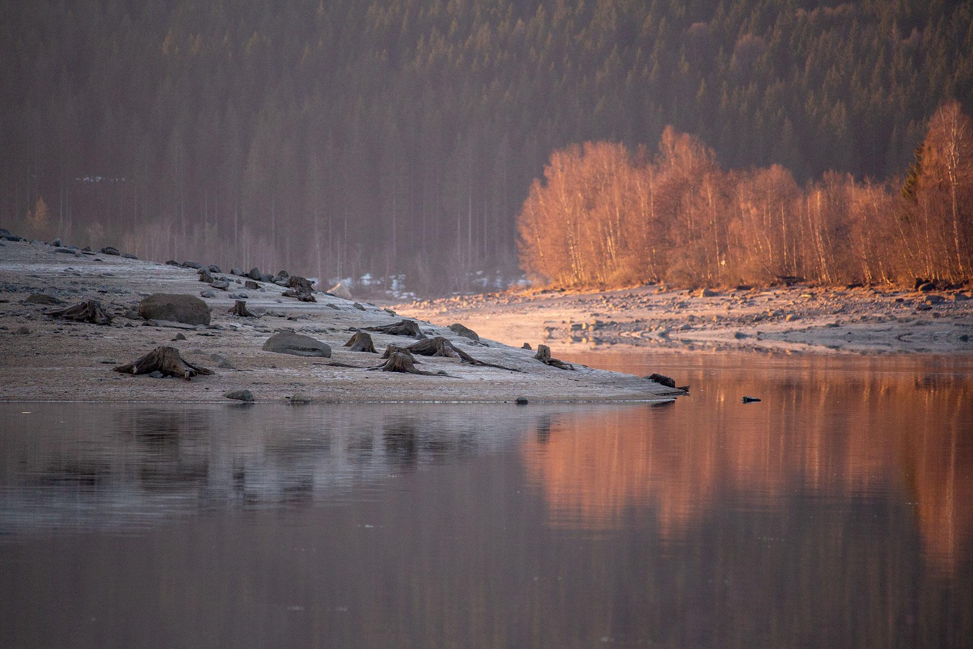 Licht bringt Farbe in unsere Welt. Eine halbe Stunde habe ich an dieser Stelle gewartet, während die Sonne langsam über den Berg und das Licht über das Ufer wanderte, bis die Bäume orange im Morgenlicht strahlten.